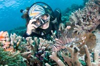 Diving with Seaventures