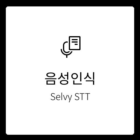 음성인식, Selvy STT