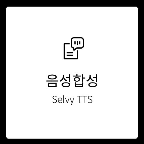 음성합성, Selvy TTS