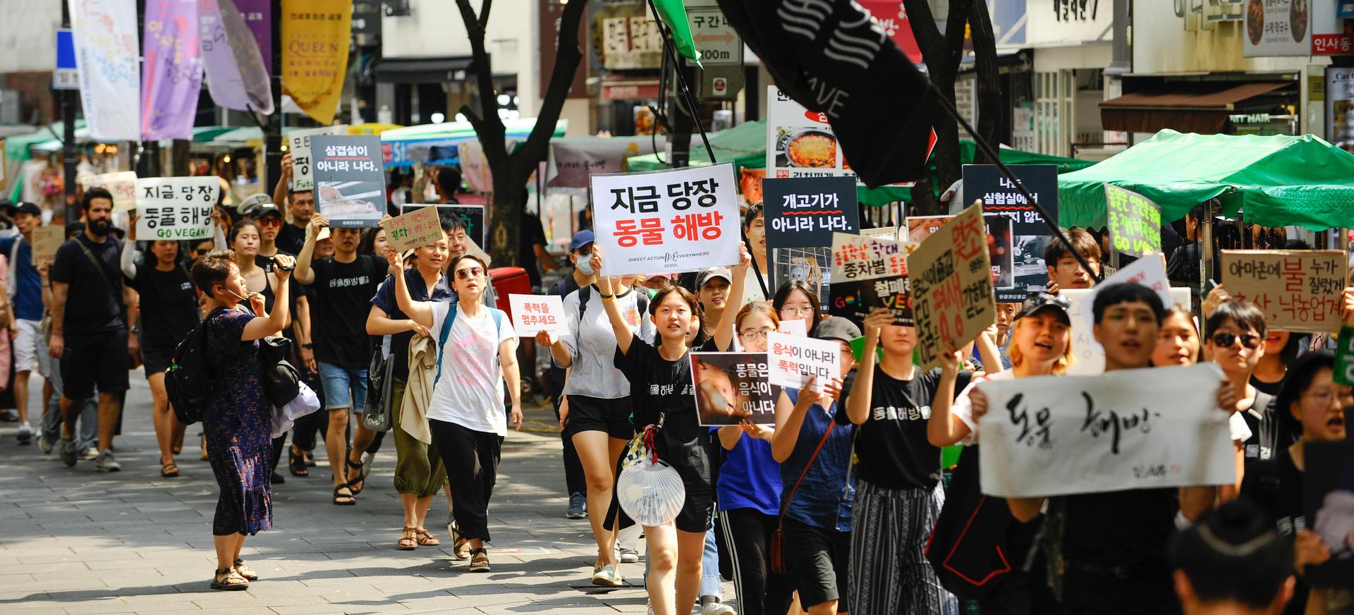 2019년도 '지금 당장, 동물 해방'을 외치며 행진하는 사람들
