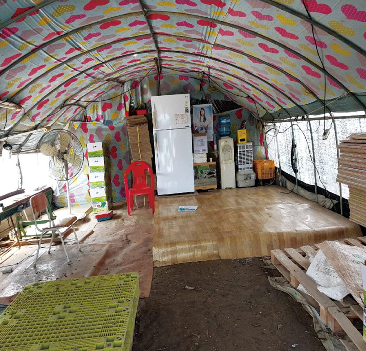 비닐하우스 숙소 안 사진입니다. 불퉁불퉁한 나무 판자 위에 장판이 깔린 것이 바닥에 있고, 농산품을 포장하는 상자 뿐만 아니라 대형선풍기 등이 쌓여 있어 창고처럼 보이는 사진입니다.